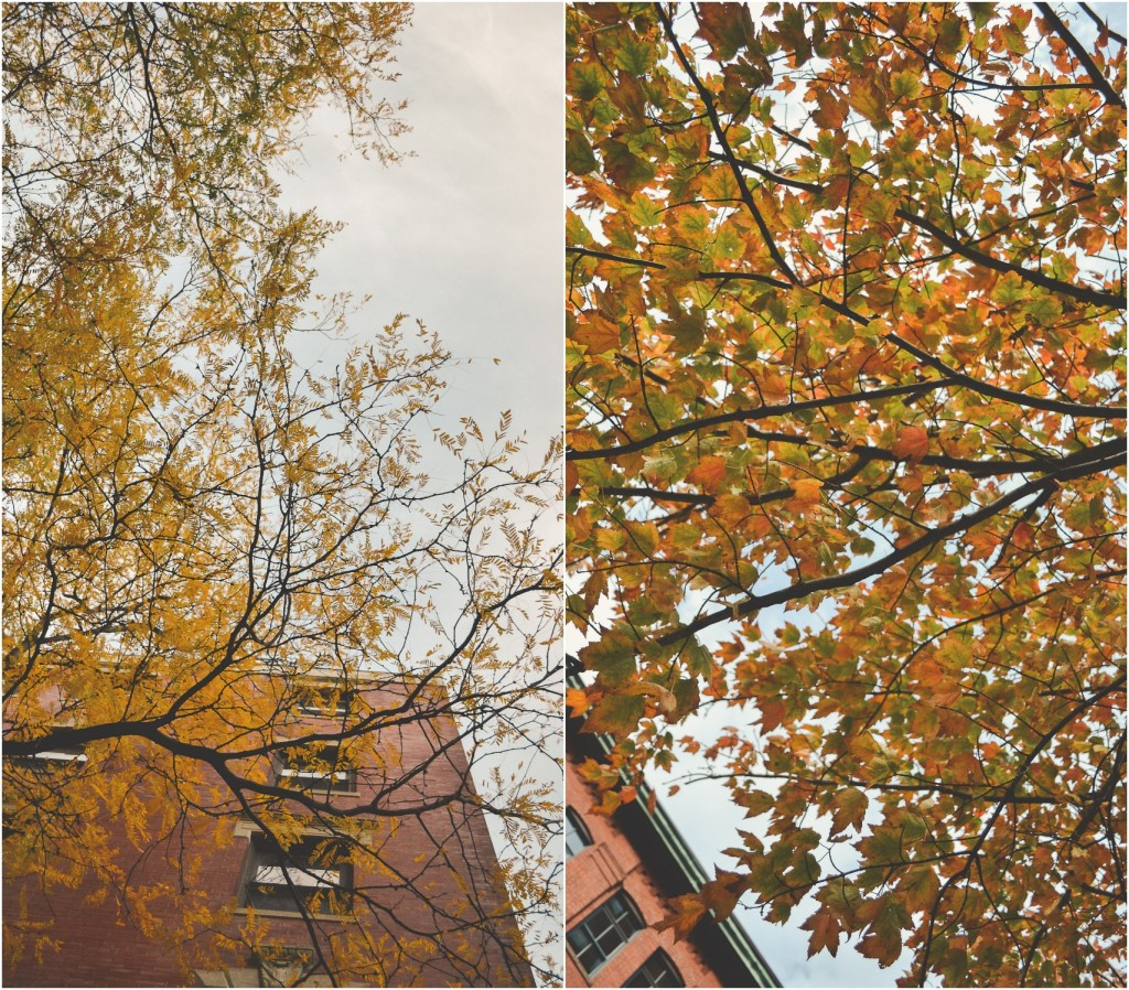 autumn collage 3